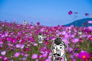 お花畑オーナー